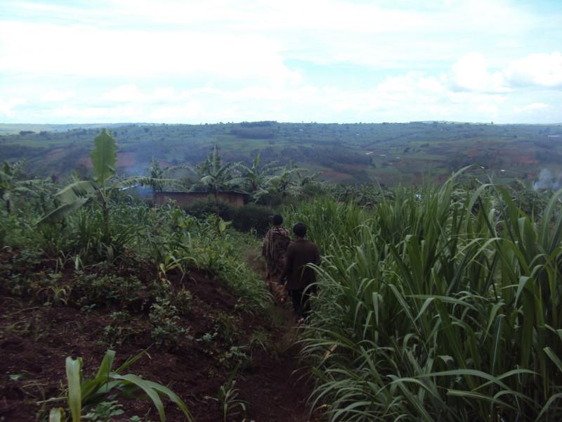 Rwandan women mountains